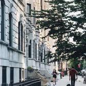 Prospect Park West, Park Slope, Brooklyn. Photo via @iwyndt #viewingnyc #newyork #newyorkcity #nyc #brooklyn #parkslope #prospectpark
