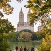 Central Park, New York. Photo via @nycgo #viewingnyc #newyork #newyorkcity #nyc #centralpark