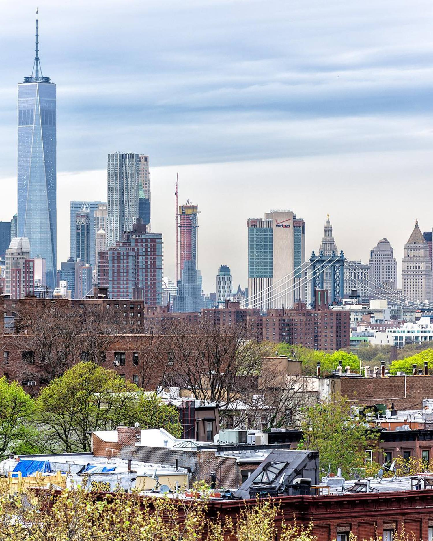 Here's a new vista I found of Clinton Hill and Fort Greene, Brooklyn with Lower Manhattan on the horizon.