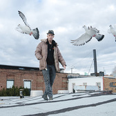 Thousands of pigeons will take to the sky each weekend for a month at the Brooklyn Navy Yard as part of the Fly by Night public art project by artist Duke Riley.