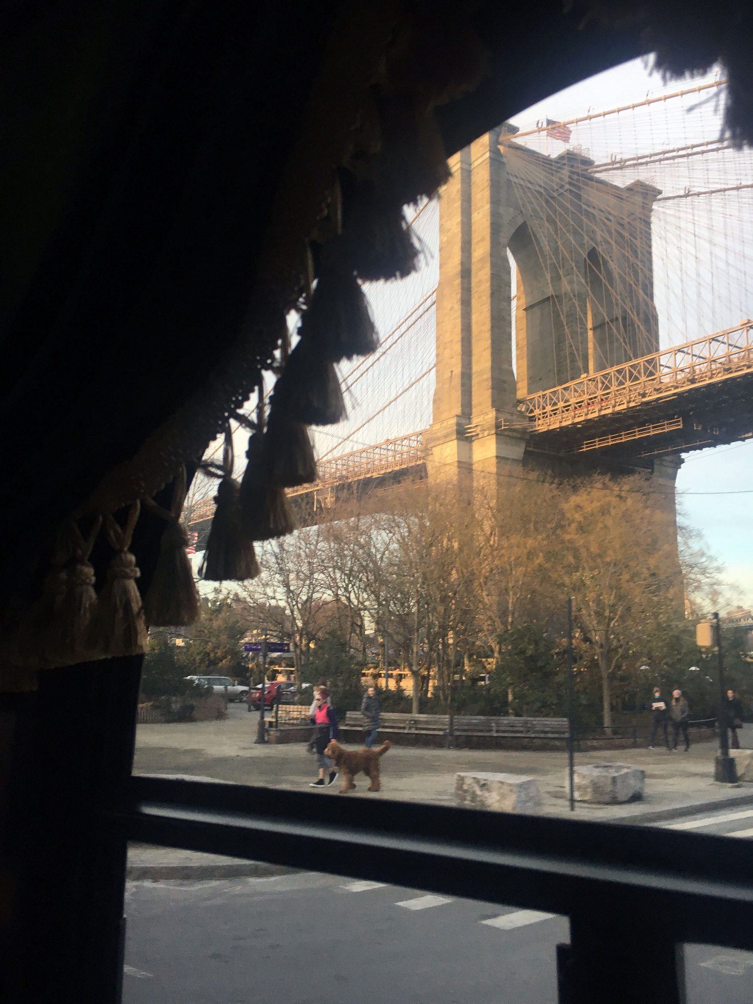 Madame Morbid's Trolly Tours | Brooklyn, New York