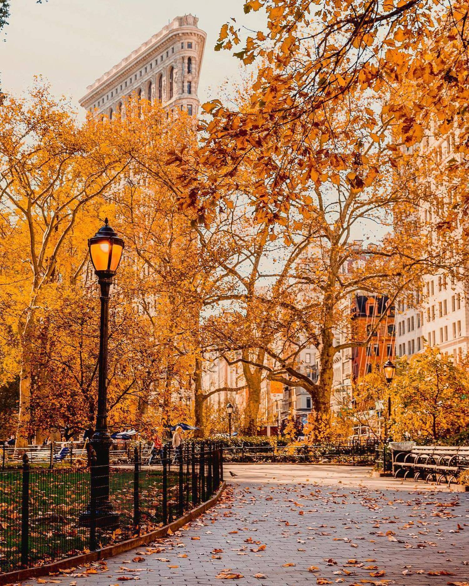 Madison Square Park and Flatiron Building, New York, New York