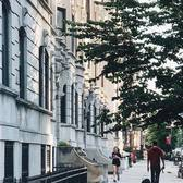 New York, New York. Photo via @iwyndt #viewingnyc #newyork #newyorkcity #nyc