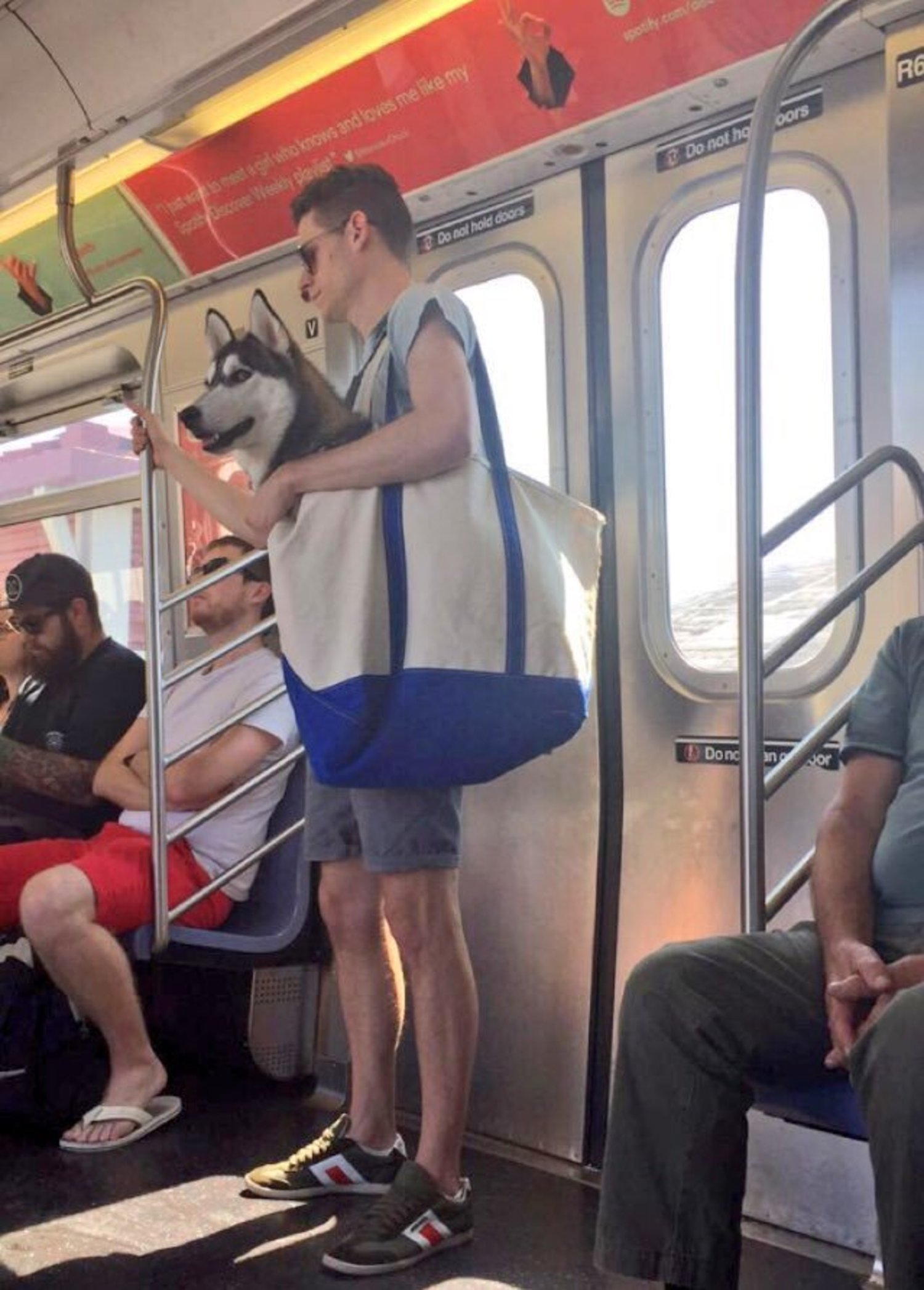 Only in New York a person would put a huge dog in a bag on the subway cc: @Gothamist https://t.co/0TpvPl37EA