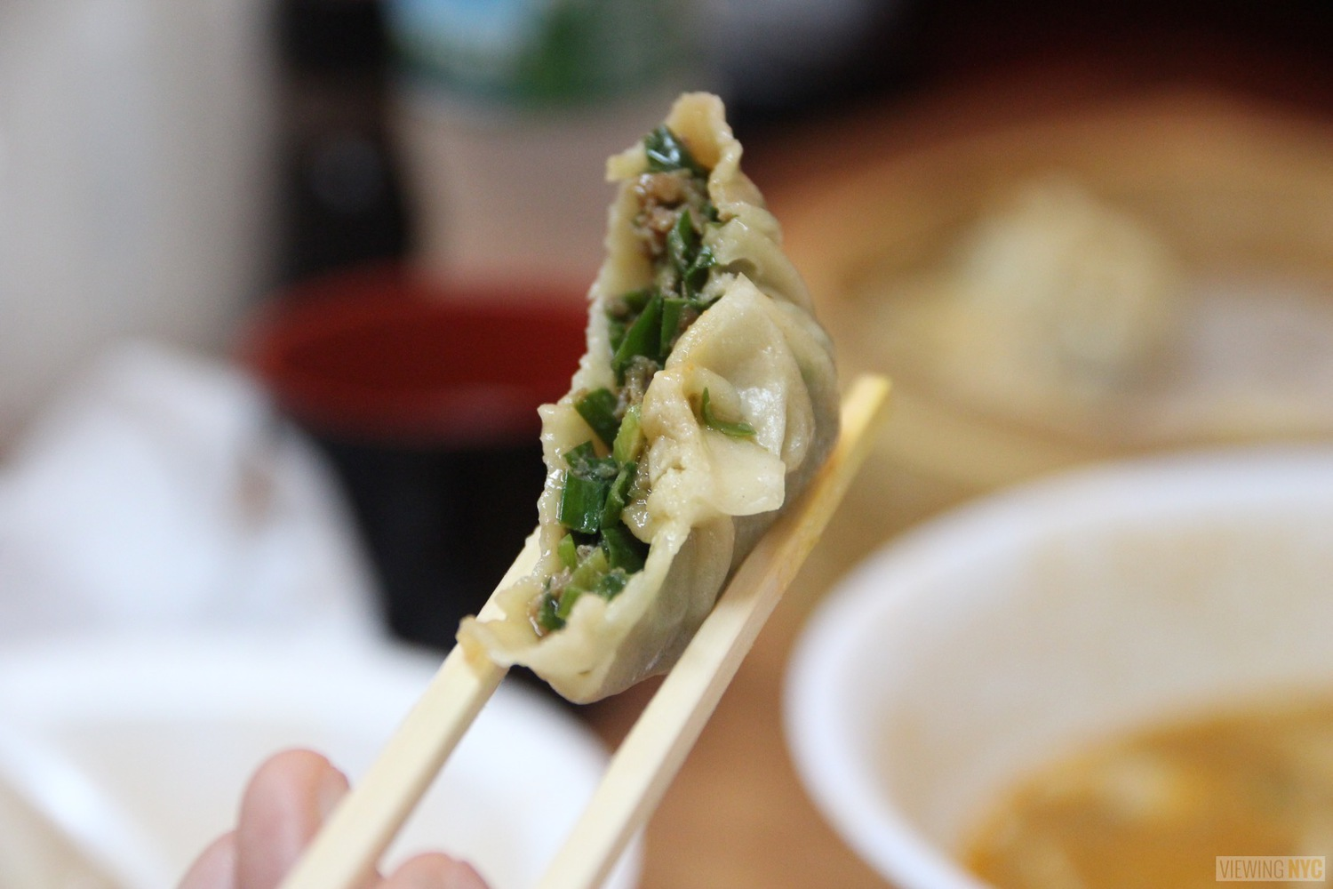 Lhasa Fast Food | Beef and Chive Momo