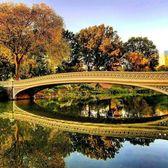 Central Park, New York. Photo via @qwqw7575 #viewingnyc #newyorkcity #newyork #nyc