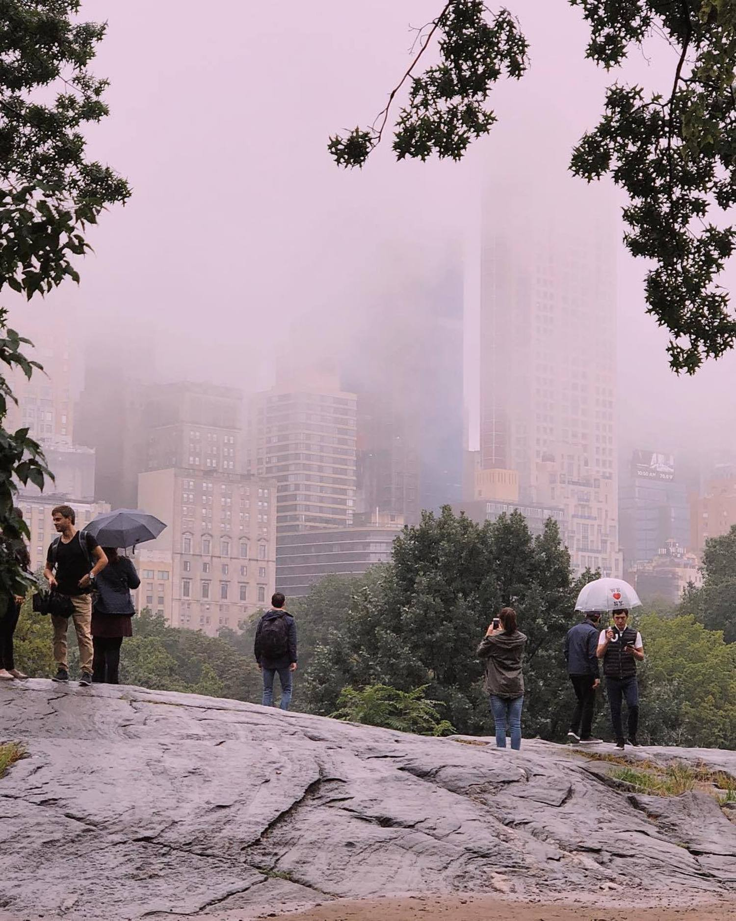 Misty cloudy morning in Central Park
