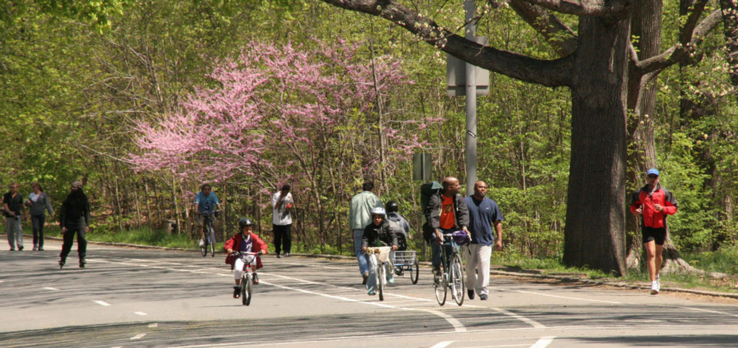 Prospect Park Loop Drive Spring