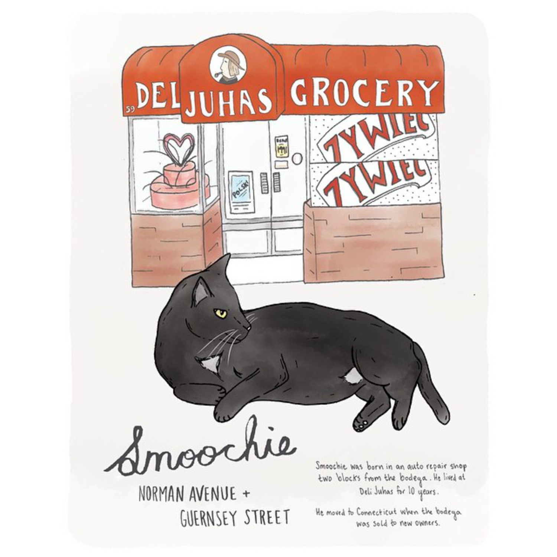 Smoochie // Greenpoint  #greenpoint #brooklynbodegacats #bodegacatsofinstagram #bodegacats #brooklyn