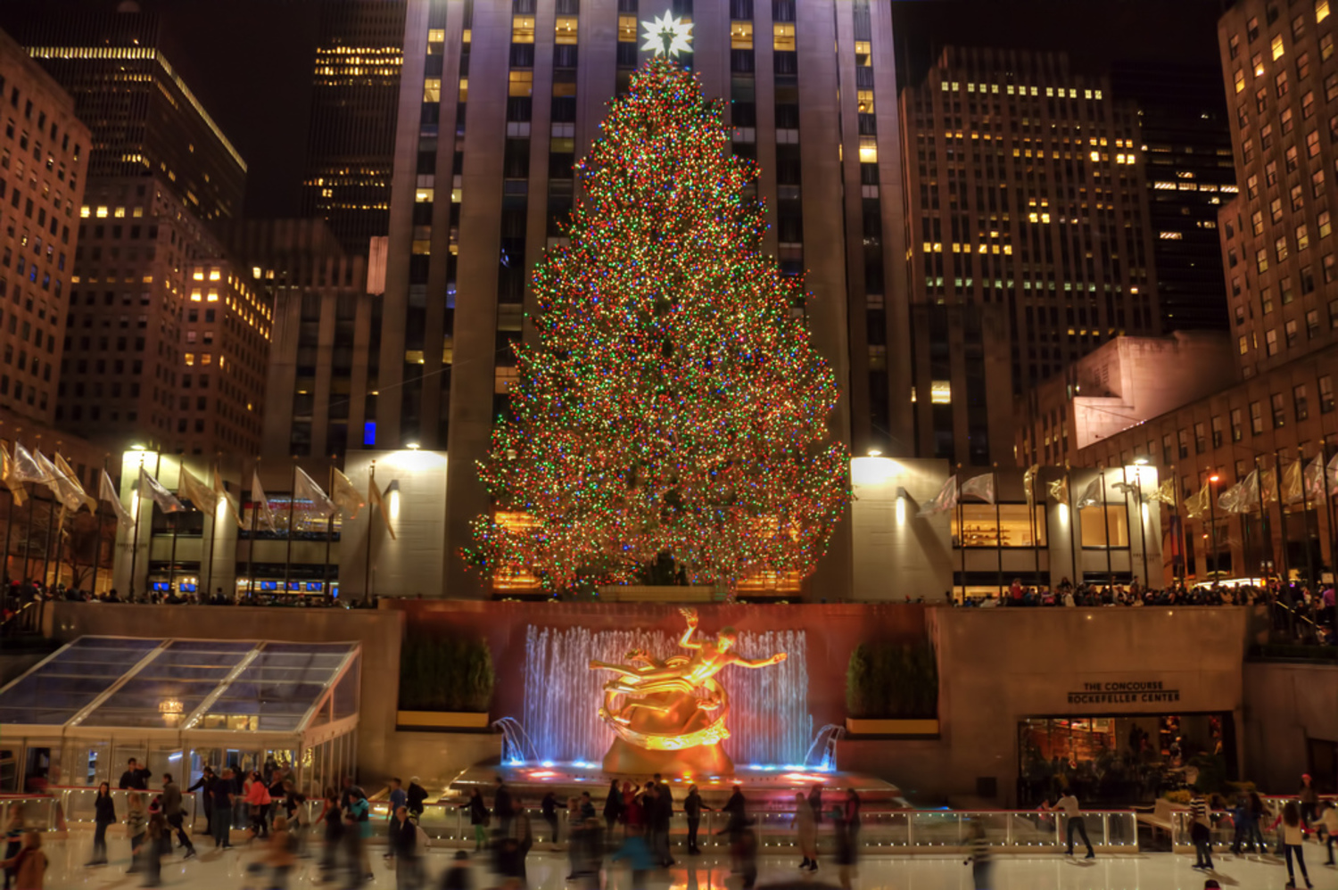 Details on Tonight's 83rd Annual Rockefeller Christmas Tree ...