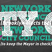 What Does the New York City Council Do?