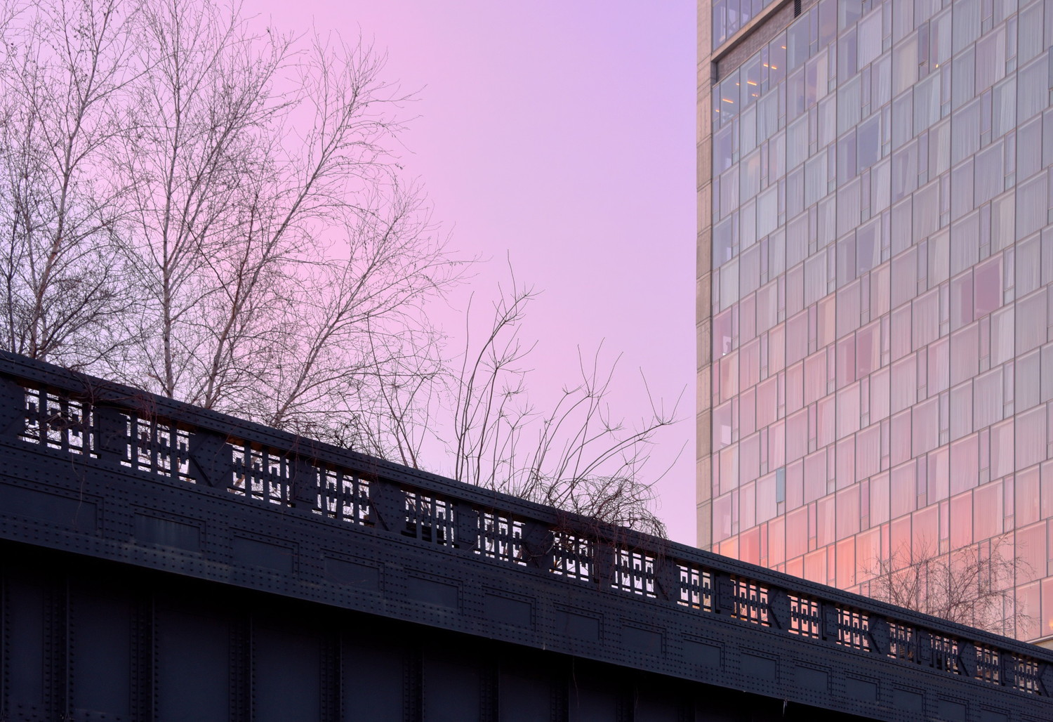 Sunset At the High Line | The sky turned a lovely color tonight as the sun set. It wasn't particularly dramatic, but everything was bathed in this soft, mauve glow.