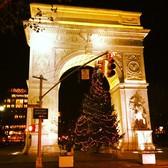 The 2011 Washington Square Park Christmas Tree