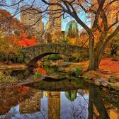Around the world with me - Manhattan - New York - USA * **************** 🍁🍂🇺🇸✨FALLtastic Colors Reflection - Perfect Autumn day at Central Park - New York is fabulous any season, anytime, anyway - Tag who you'd go to Central Park with * ********** Please, check out my friends I've tagged here... They are talented photographers, you  won't regret it🍁🍂🇺🇸