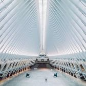 World Trade Center Oculus, New York, New York. Photo via @svvvk #viewingnyc #newyork #newyorkcity #nyc #worldtradecenter