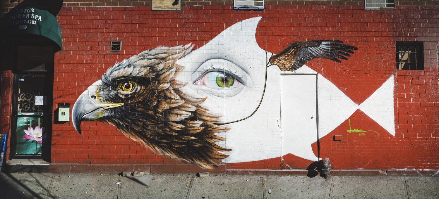 """Strange Bird"" Manhattan, New York photo by Silkfatblues Photo & Videography"