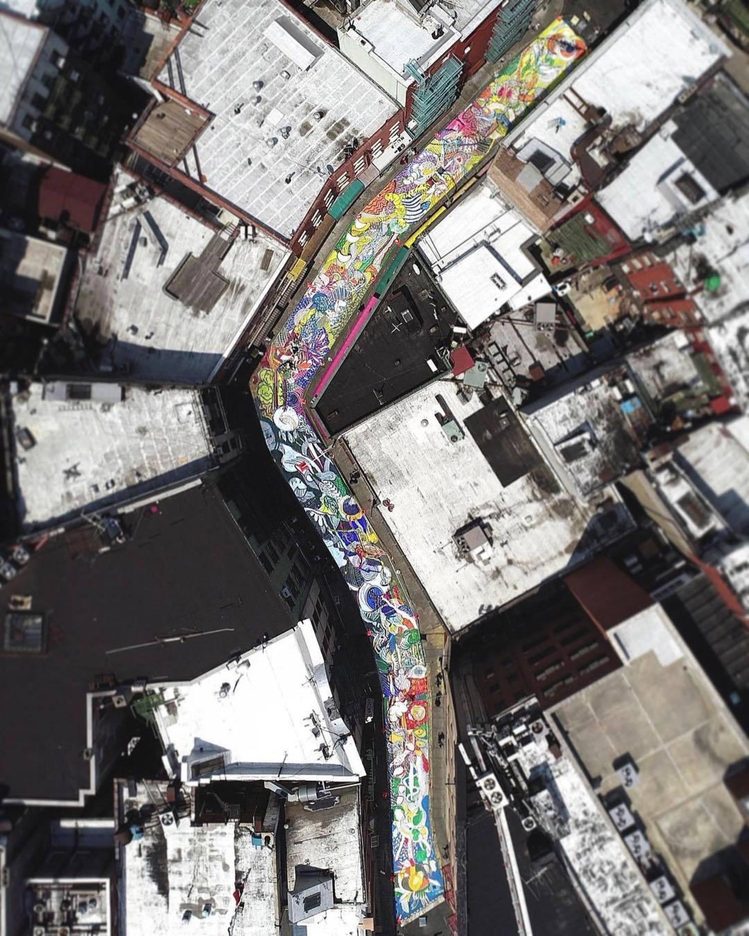 The fourth day!  一条彩色流动的河, 一条蜿蜒盘踞的龙, 一片流光溢彩的花海, 一曲跳跃音符的乐章!
