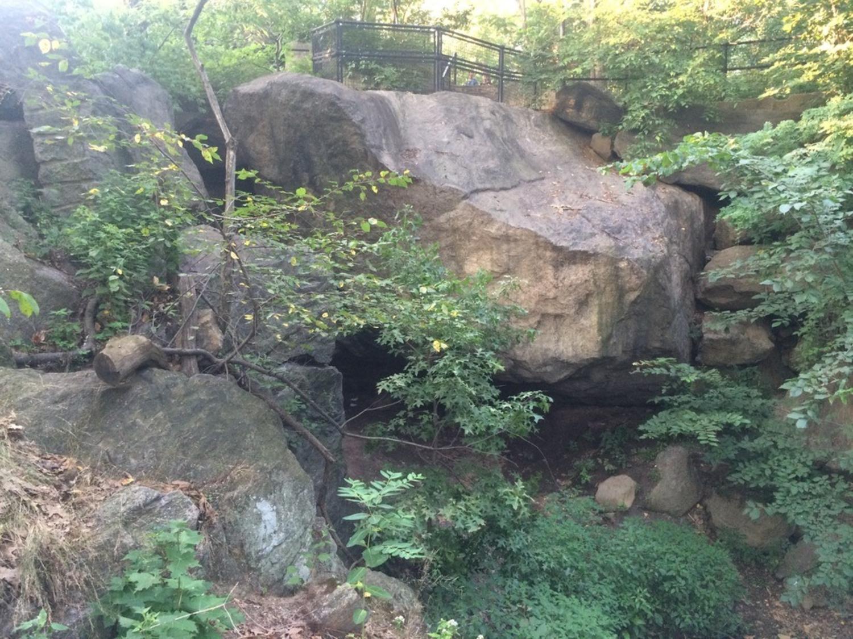 Ramble Cave, Central Park