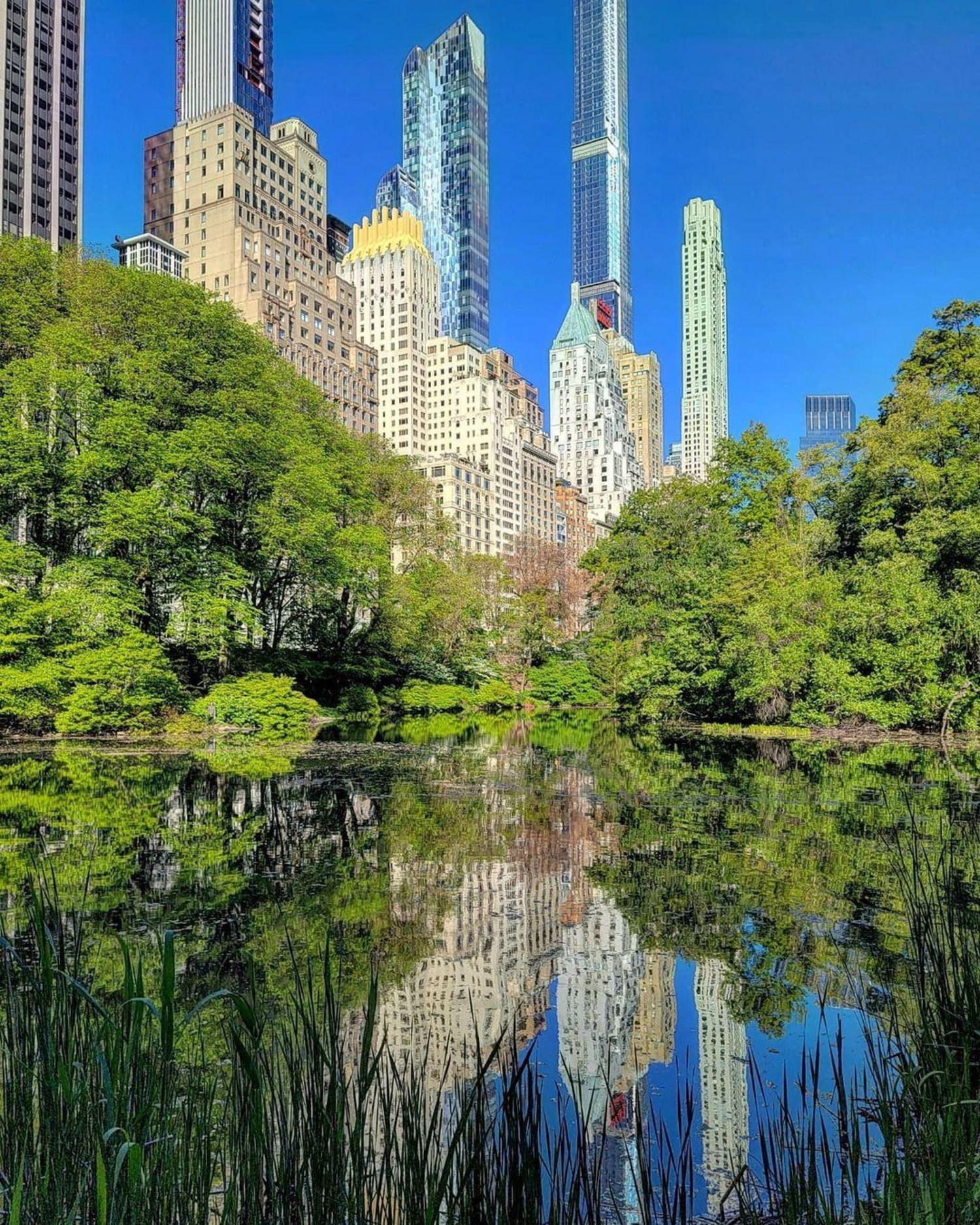 The Pond, Central Park, Manhattan