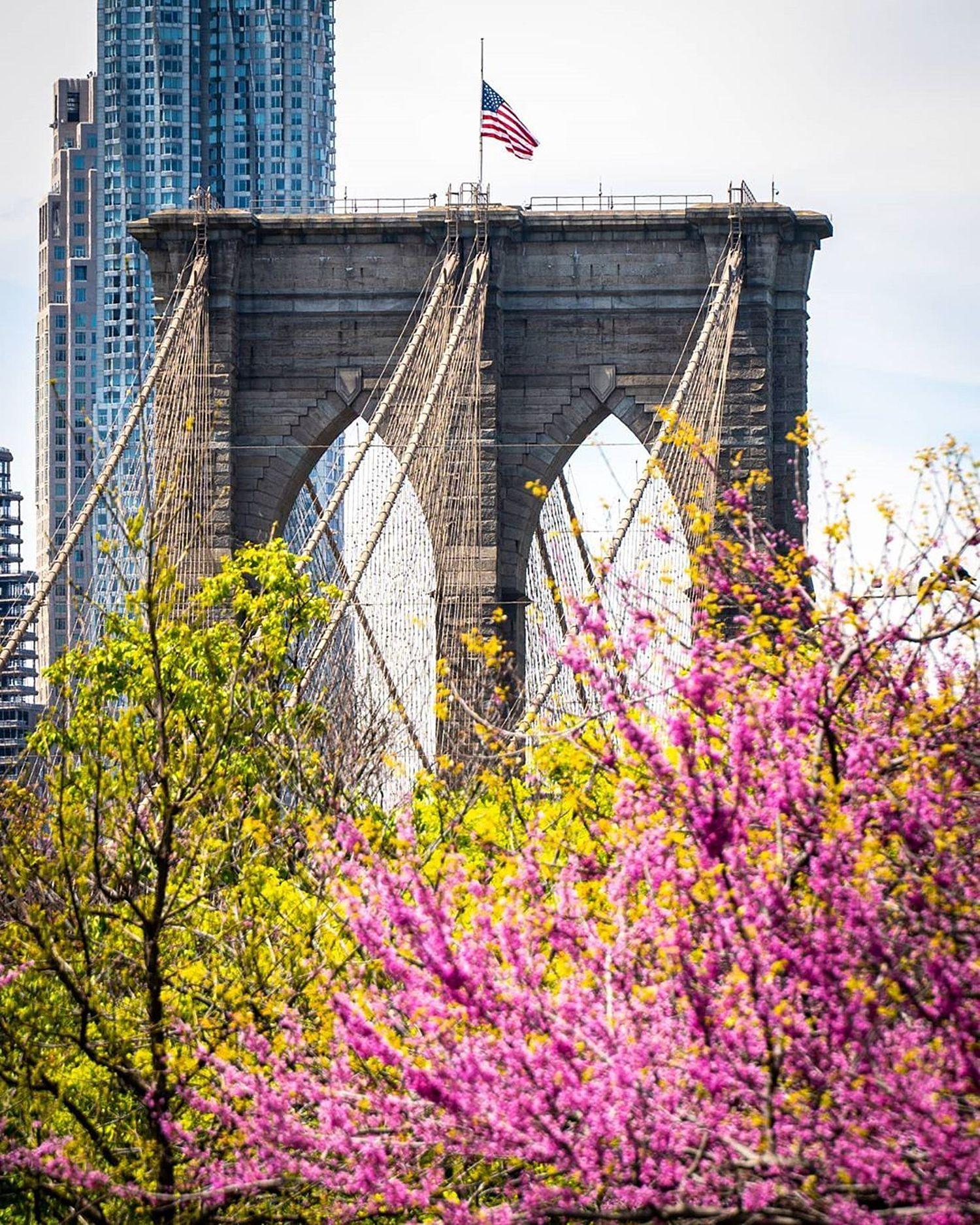 Brooklyn Bridge, Brooklyn