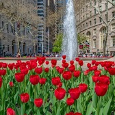 Bowling Green Park, Manhattan, New York