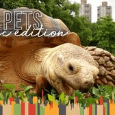 This Tortoise Lives In Harlem And Hangs Out In Central Park | The Dodo City Pets