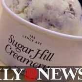 Family-run Sugar Hill Creamery opens in Harlem