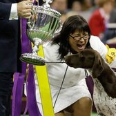CJ, German shorthaired pointer wins dog show https://t.co/pDgdSCxmrO https://t.co/GTwVKnDmLU