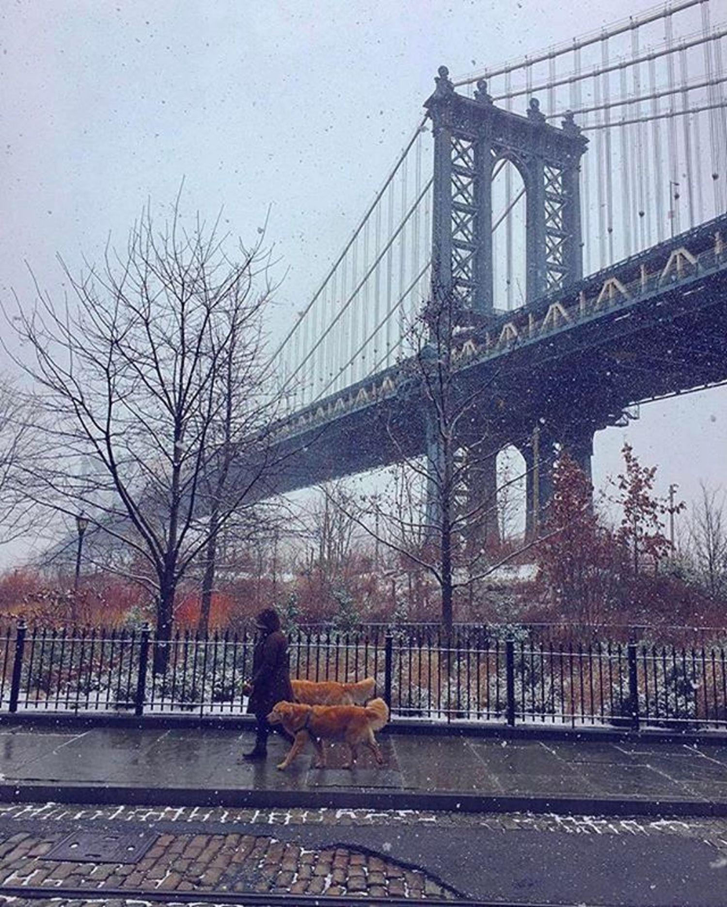 Photo via @fallinginlovewithnyc  Manhattan Bridge  #viewingnyc