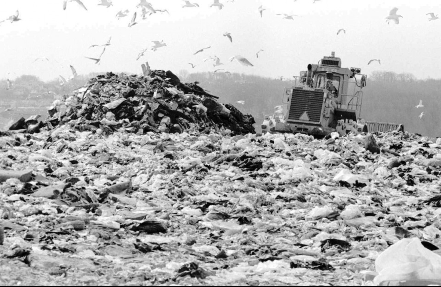 A 'Compactor' pulls up along side of a freshly dropped pile of garbage at the landfill. Circa 1996.