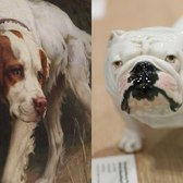 Museum of the Dog returns to NYC after 32 years | In Our Backyard