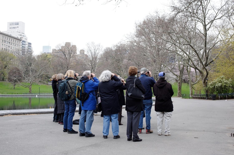 Bird watchers in Central Park