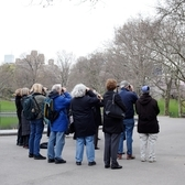 Bird watchers in Central Park