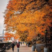 Brooklyn Heights Promenade, Brooklyn