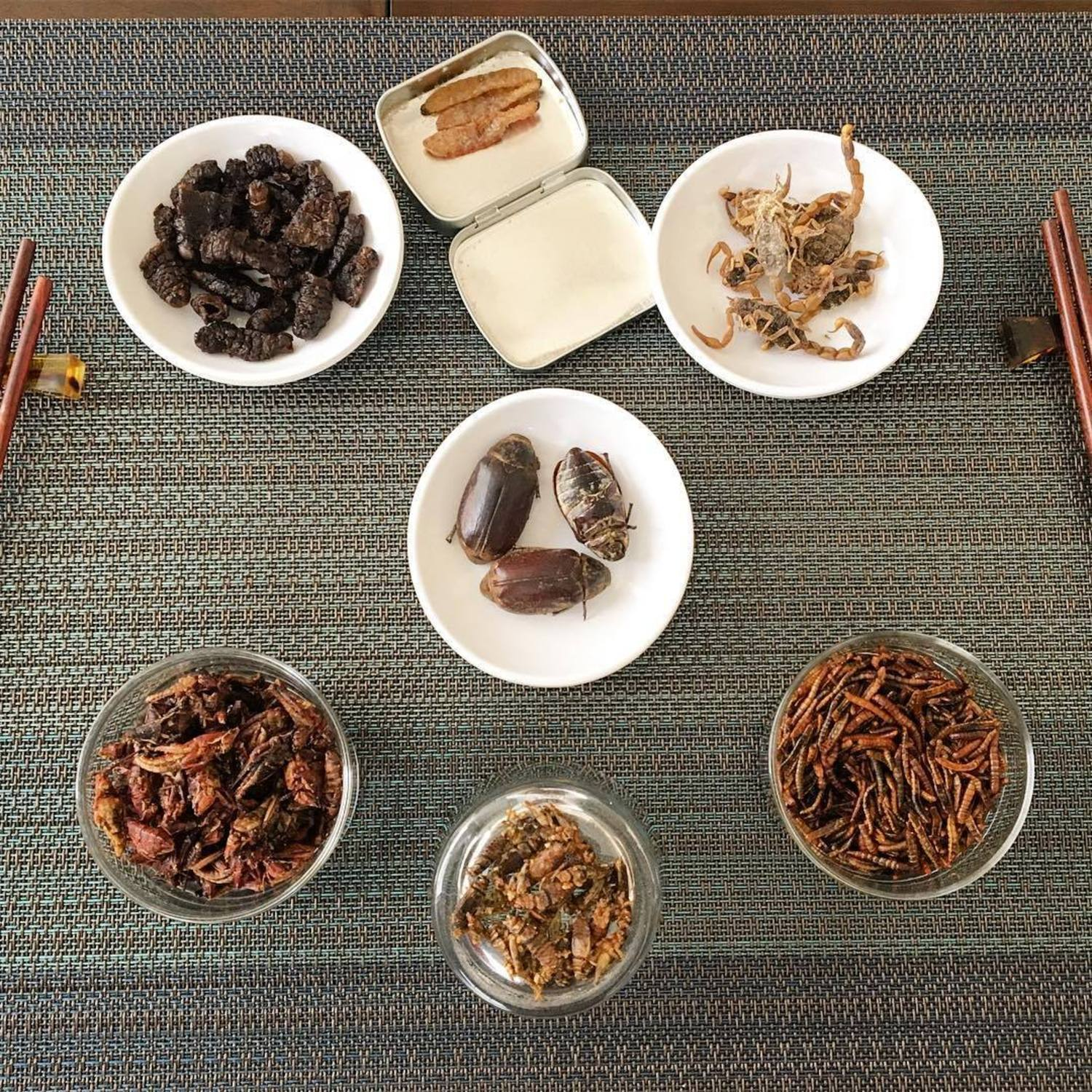 Look at this delicious selection of #edibleinsects from our various sponsors. Tag a friend who'd love to try eating some #bugs! 📷: @dinnerecho