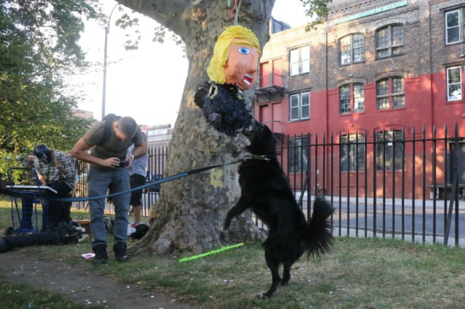 Sweet gig alert: Make $15/hour handing out Donald Trump dog poop bags