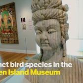 Get Going: Snug Harbor Cultural Center & Botanical Garden