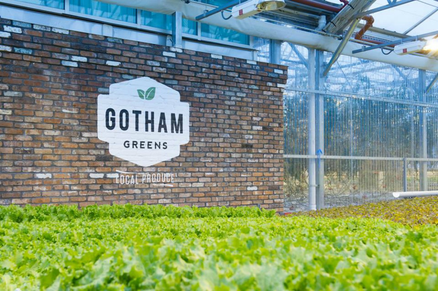 New Yorkers can now look forward to even more fresh, locally-grown veggies thanks to Gotham Greens' new rooftop farm in Hollis, Queens. The 60,000-square-foot greenhouse is the urban agriculture company's third and largest growing facility in New York City and will allow the Brooklyn-based brand to triple their high-quality, pesticide-free produce production in the New York region.