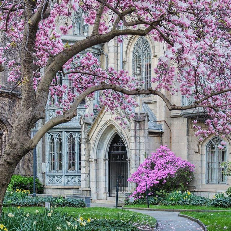Grace Church, Manhattan