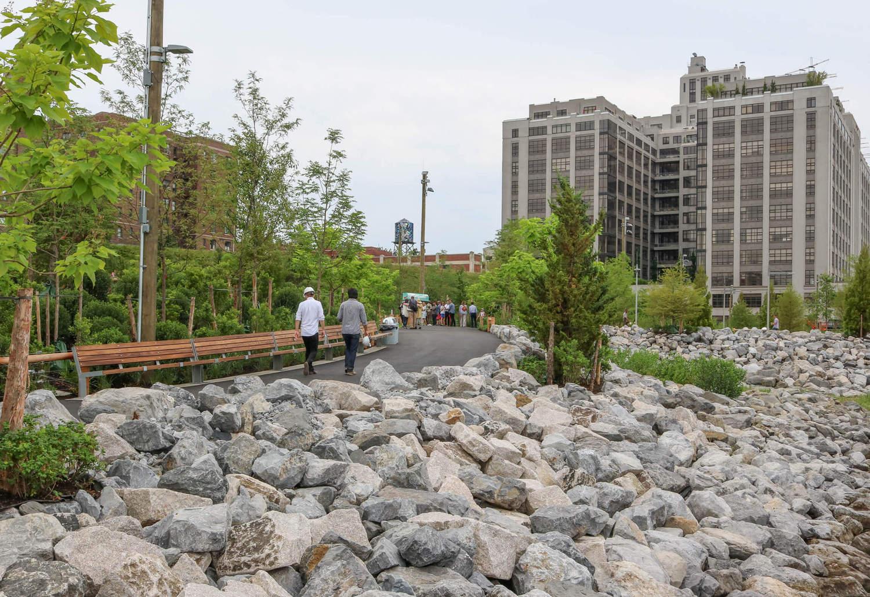 Brooklyn Bridge Park Pier 5 Uplands Green Space