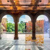 4 Seasons of Bethesda Terrace, Central Park, New York, New York