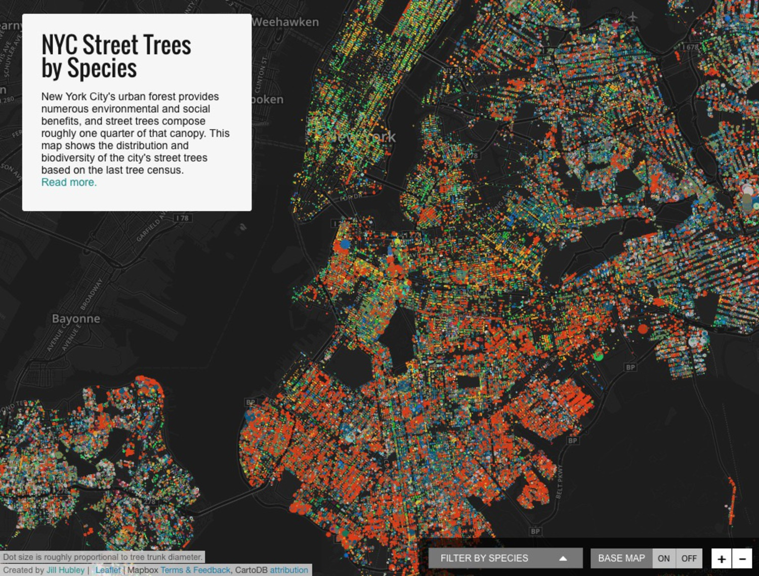 NYC Street Trees by Species
