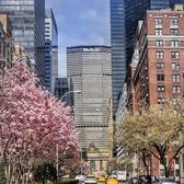 Spring has finally sprung!!🙌🏻😄🗽🌸😍#spring2016 #grandcentral #manhattan #newyorkcity #newyork #newyorker #nyc #wildnewyork #what_i_saw_in_nyc  #centralpark #cherryblossoms #ig_nycity  #instadaily #instanewyork #america #usa #picoftheday #cityscape #instagramnyc #nycprimeshot #pocket_usa #beautifuldestinations #travelingourplanet #empirestate #throwback #parkavenue #springblossoms #cherryblossom #timeoutnewyork #iloveny