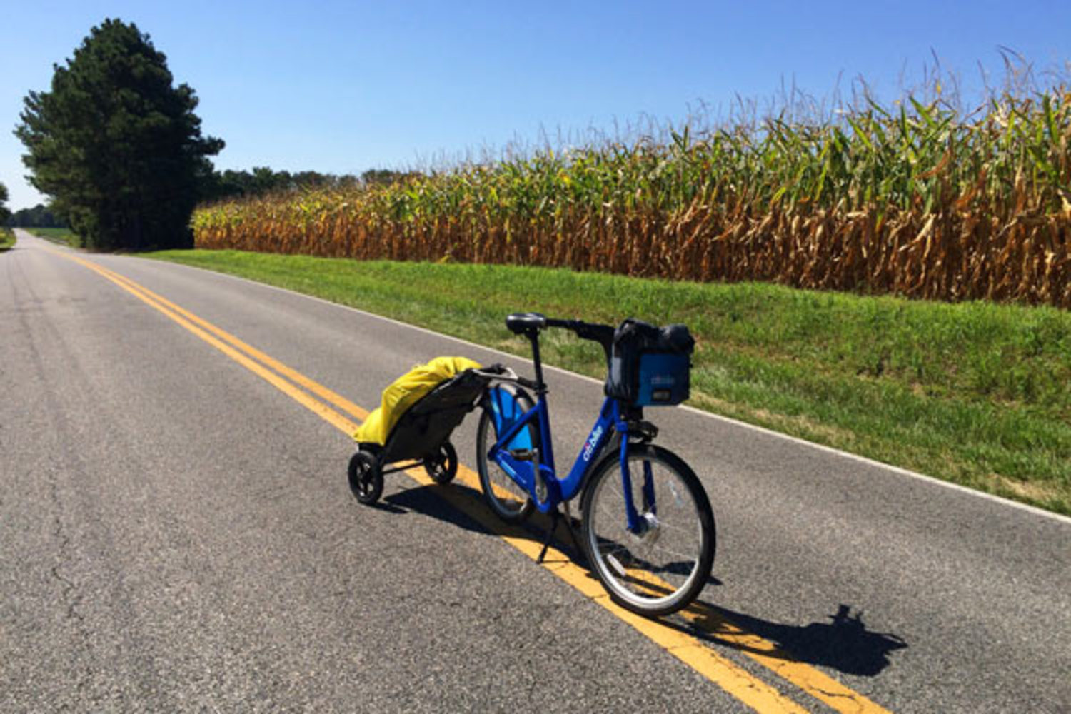 Tanenhaus hauls his travel essentials in a small trailer hitched to the seat post.
