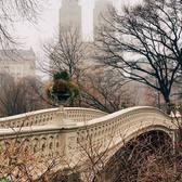 Bow Bridge, Central Park, New York