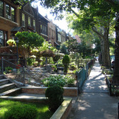 Greenest Block in Brooklyn