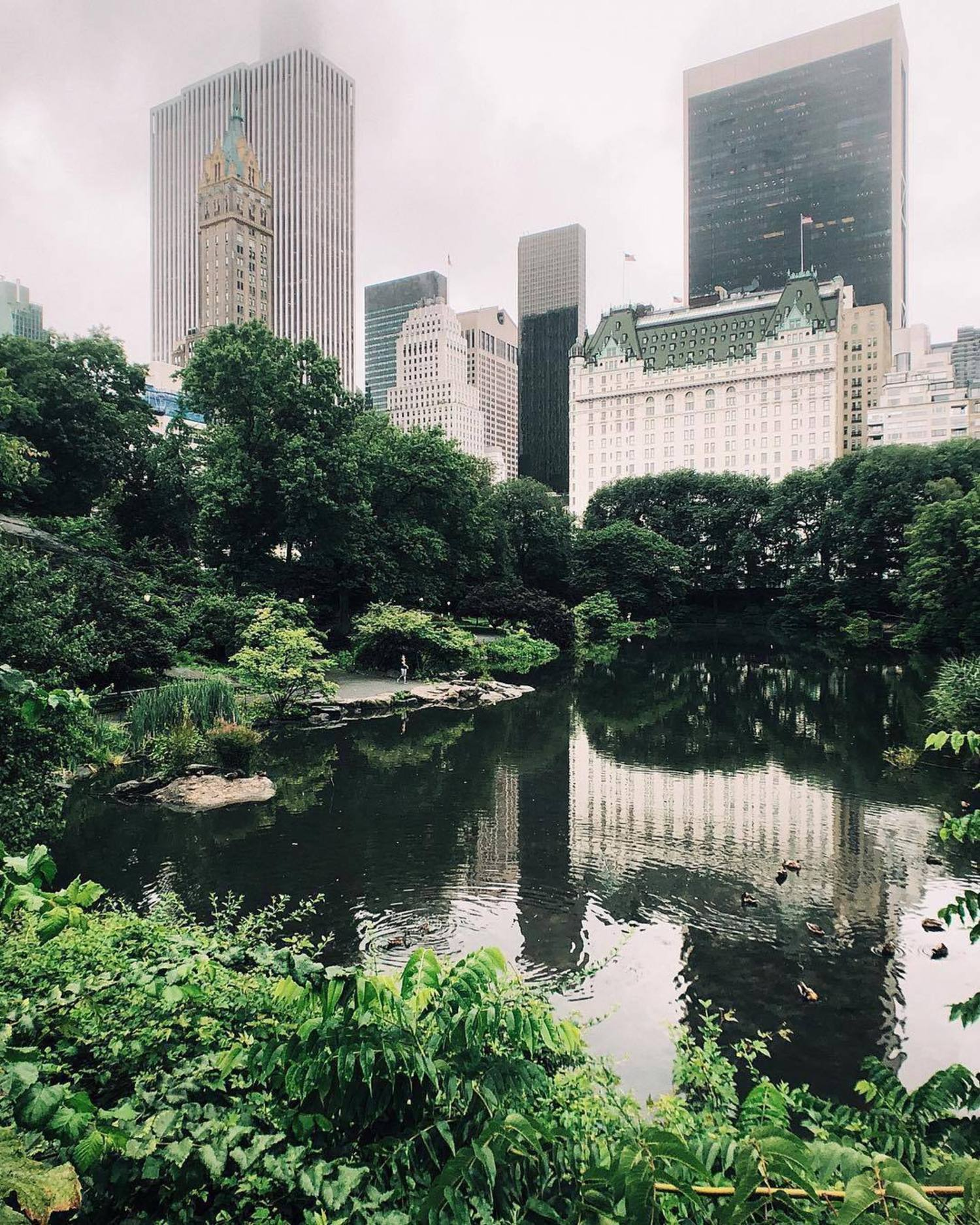 Central Park, New York. Photo via @melliekr #viewingnyc #newyork #newyorkcity #nyc #centralpark #rain