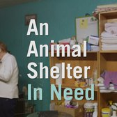 The Only No-Kill Animal Shelter In The Bronx May Close
